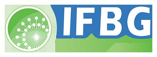 IFBG - Légtechnikai szűrőbetétek és Szűrők, IFBG Kft. | IFBG Kft.